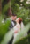 bride and groom about to kiss standing in greenery